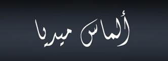loveksa almasmedia logo design
