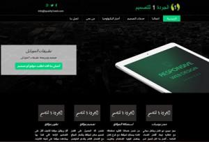 loveksa web design